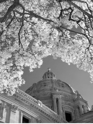 capitol dome spring